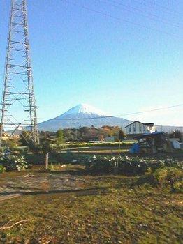 2008-11-13.jpg